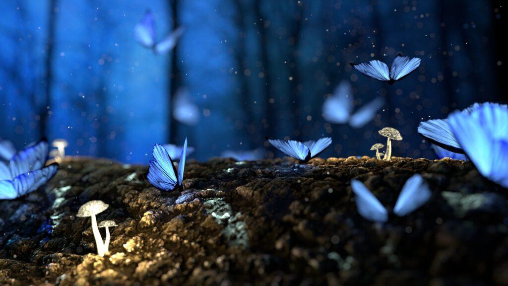 Bosco con farfalle